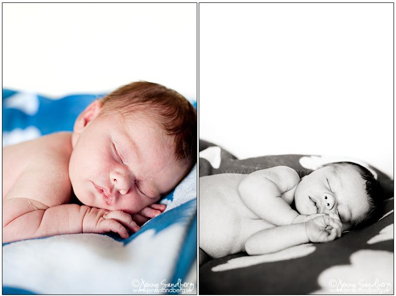 Babyfoto Lund Fotograf Jenny Sandberg