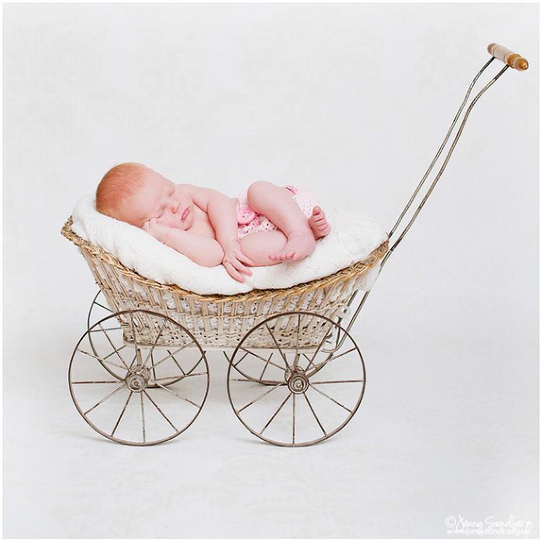 Nyföddfoto, Babyfotograf Lund